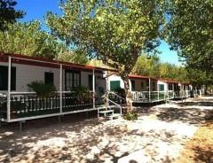 Riccione - Camping INTERNATIONAL RICCIONE